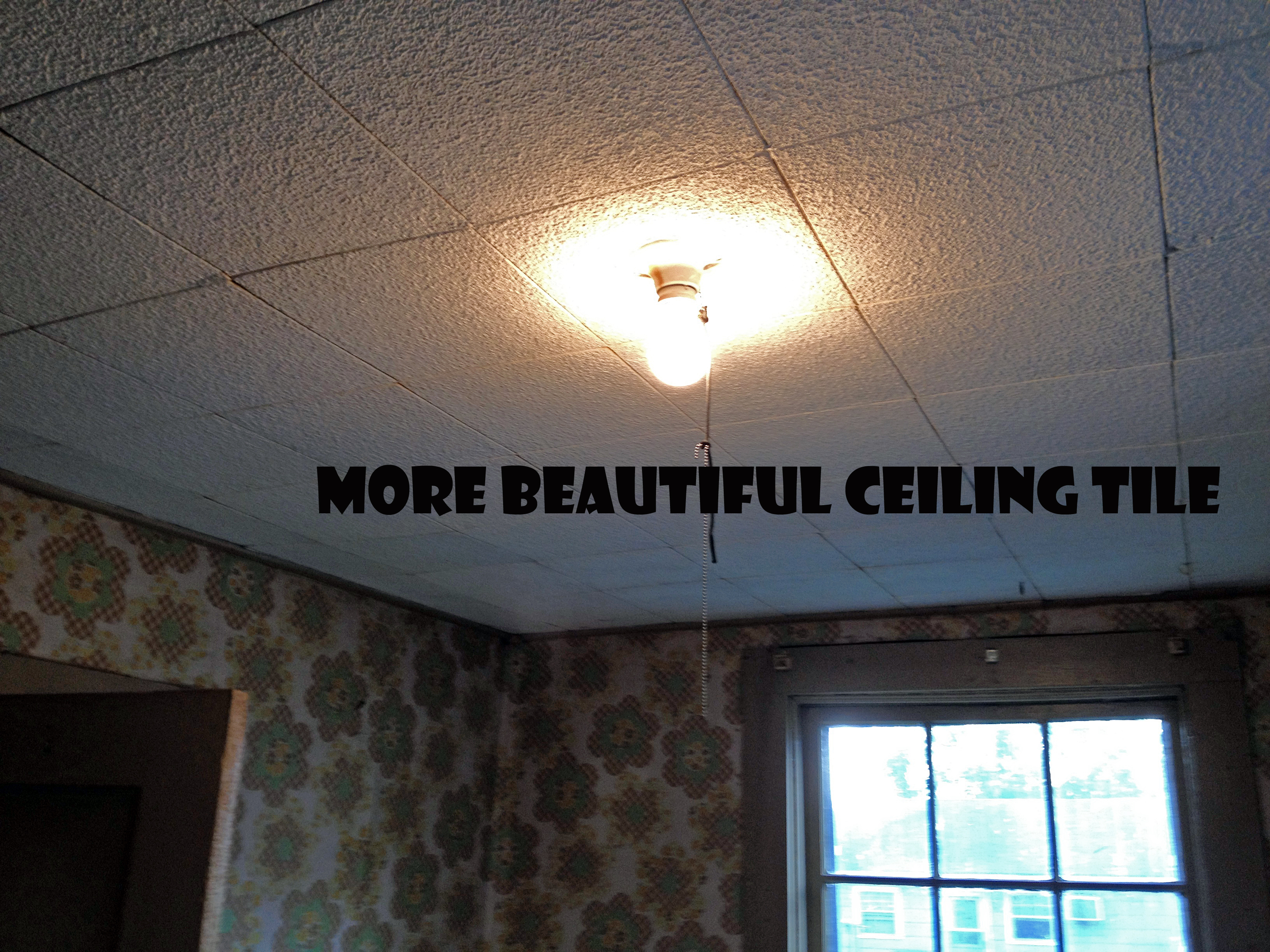 Ceiling Tiles For Kitchen Mom Younganddomestic