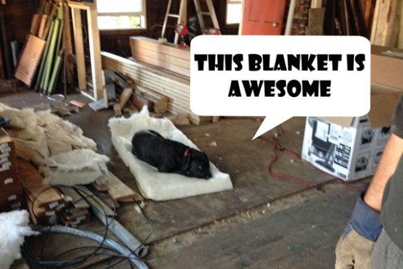 Insulation_Tori-new-blanket