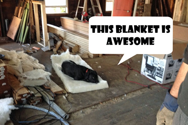 Insulation_Tori-new-blanket