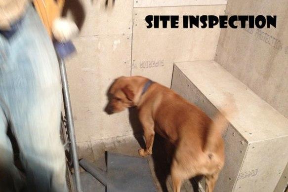 Shower_Bella-inspection