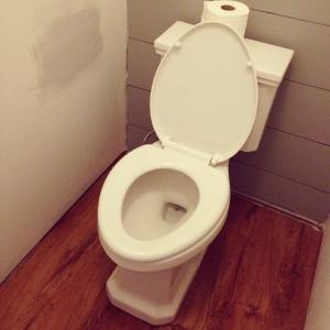master bath toilet