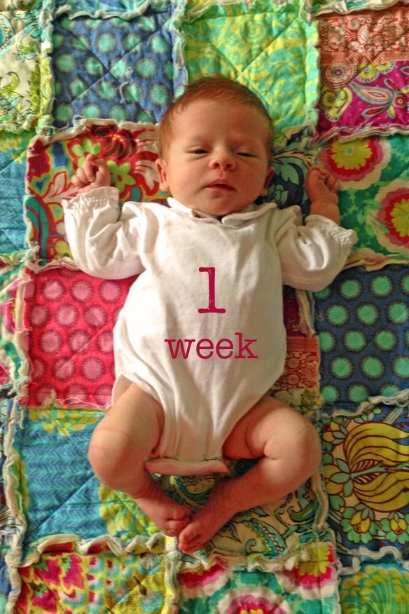 Reagan_1 week old copy