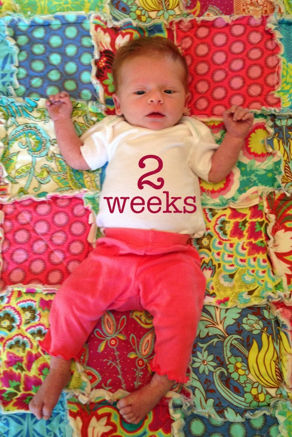 Reagan_2 week copy